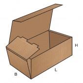 FEFCO 0421 dėžės modelis